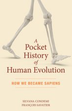 Pocket History of Human Evolution