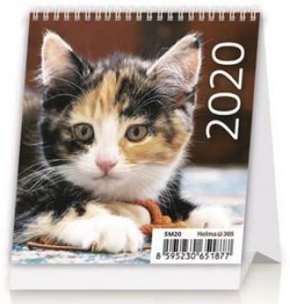 Mini Kittens - stolní kalendář 2020