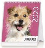 Mini Puppies - stolní kalendář 2020