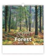 Forest/Wald/Les - nástěnný kalendář 2020