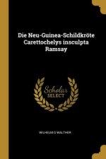 Die Neu-Guinea-Schildkröte Carettochelys Insculpta Ramsay