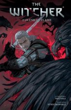 Witcher Volume 4