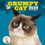 Grumpy Cat 2020 Wall Calendar