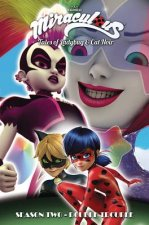 Miraculous: Tales of Ladybug and Cat Noir: Season Two - Double Trouble
