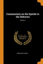 Commentary on the Epistle to the Hebrews; Volume 1