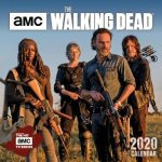Walking Dead , the 2020 Mini Wall Calendar