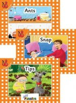 Jolly Phonics Orange Level Readers Set 1