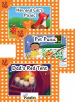 Jolly Phonics Orange Level Readers Set 2