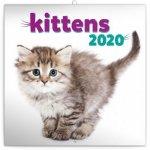 Poznámkový kalendář Koťata 2020