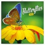 Poznámkový kalendář Motýli 2020