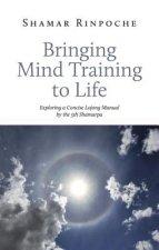 Bringing Mind Training to Life