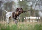 Jagdhunde bei der Arbeit (Wandkalender 2020 DIN A4 quer)
