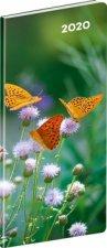 Kapesní diář Motýli 2020 plánovací