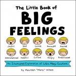 Little Book of Big Feelings