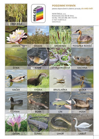 Pexeso Podzimní rybník (Já můj svět 2)