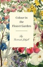 Colour in the Flower Garden