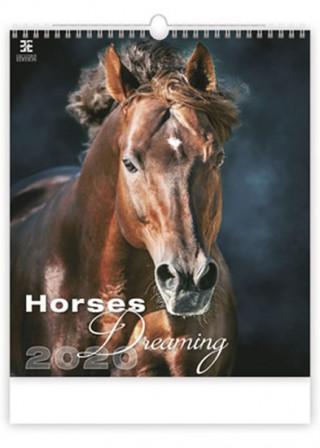 Horses Dreaming - nástěnný kalendář 2020