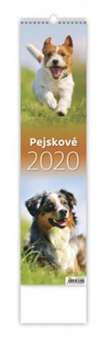 Pejskové - nástěnný kalendář 2020