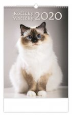Kočičky/Mačíčky - nástěnný kalendář 2020