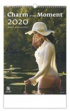 Charm of the Moments - nástěnný kalendář 2020