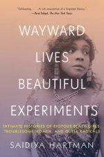 Wayward Lives, Beautiful Experiments - Intimate Histories of Riotous Black Girls, Troublesome Women, and Queer Radicals