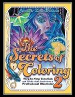 Secrets of Coloring 2