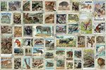 Animal Stamps 3000 PC Puzzle