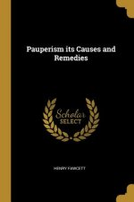 Pauperism Its Causes and Remedies