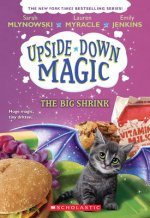Big Shrink (Upside-Down Magic #6)