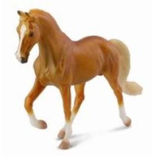 Klacz rasy stallion golden palomino