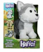 Hafíci Maxík - husky