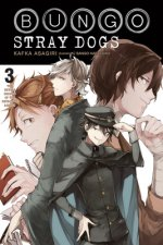 Bungo Stray Dogs, Vol. 3 (light novel)