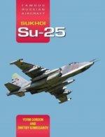 Famous Russian Aircraft Sukhoi Su-25