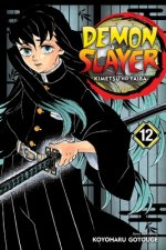 Demon Slayer: Kimetsu no Yaiba, Vol. 12