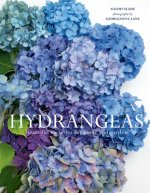 Hydrangeas: Beautiful Varieties for Home and Garden