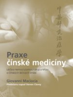 Praxe čínské medicíny