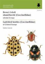 Brouci čeledi slunéčkovití (Coccinellidae)
