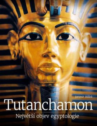 Tutanchamon Největší objev egyptologie