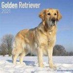 Golden Retriever 2021 Wall Calendar