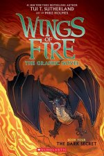 Dark Secret (Wings of Fire Graphic Novel #4): Graphix Book