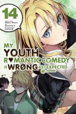 My Youth Romantic Comedy Is Wrong, as I Expected @ Comic, Vol. 14 (Manga)