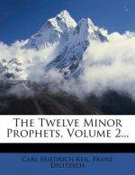 The Twelve Minor Prophets, Volume 2...
