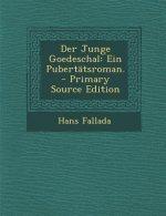 Der Junge Goedeschal: Ein Pubertatsroman.