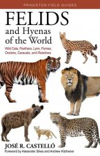 Felids and Hyenas of the World: Wild Cats, Panthers, Lynx, Pumas, Ocelots, Caracals, and Relatives