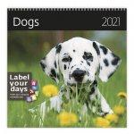 Dogs - nástěnný LP kalendář 2021