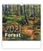 Kalendář 2021 nástěnný: Forest/Wald/Les, 340x325