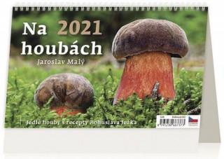 Kalendář 2021 stolní: Na houbách, 226x139