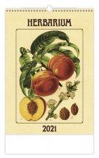 Herbarium - nástěnný kalendář 2021