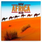 Poznámkový kalendář Divoká Afrika 2021