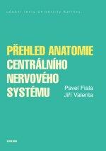 Přehled anatomie centrálního nervového systému